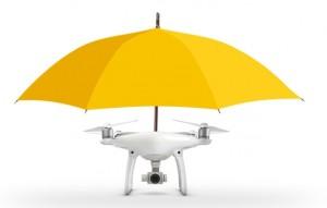 DroneMaine